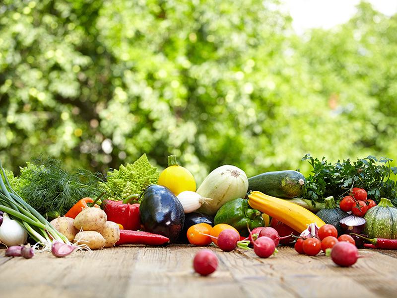 alimentos calidad montar huerto urbano